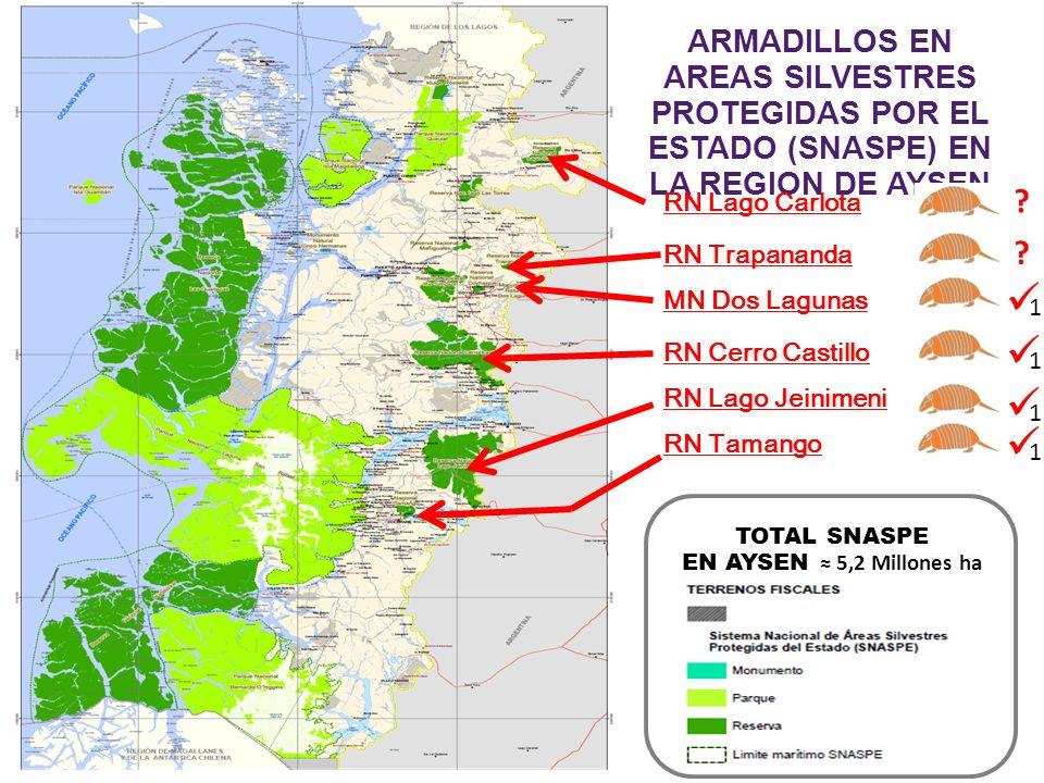 TOTAL SNASPE EN AYSEN 5,2 Millones ha ARMADILLOS EN AREAS SILVESTRES PROTEGIDAS POR EL ESTADO (SNASPE) EN LA REGION DE AYSEN RN Lago Carlota RN Cerro Castillo RN Lago Jeinimeni RN Tamango RN Trapananda MN Dos Lagunas .