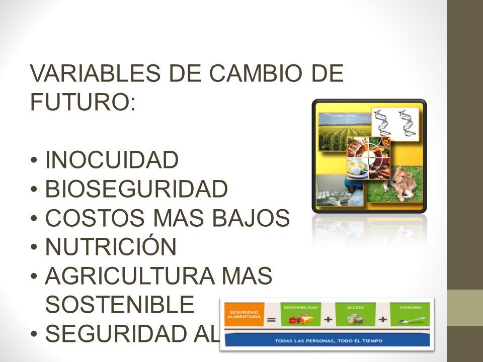 AGRICULTURA URBANA (Huertos verticales en ciudades) Se realiza para actividades de producción de alimentos.