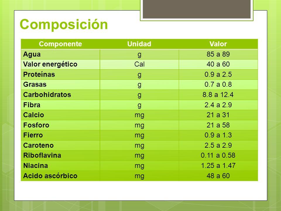 Composición ComponenteUnidadValor Aguag85 a 89 Valor energéticoCal40 a 60 Proteínasg0.9 a 2.5 Grasasg0.7 a 0.8 Carbohidratosg8.8 a 12.4 Fibrag2.4 a 2.9 Calciomg21 a 31 Fosforomg21 a 58 Fierromg0.9 a 1.3 Carotenomg2.5 a 2.9 Riboflavinamg0.11 a 0.58 Niacinamg1.25 a 1.47 Acido ascórbicomg48 a 60