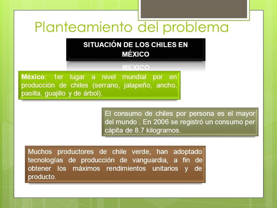 Planteamiento del problema México: 1er lugar a nivel mundial por en producción de chiles (serrano, jalapeño, ancho, pasilla, guajillo y de árbol). El