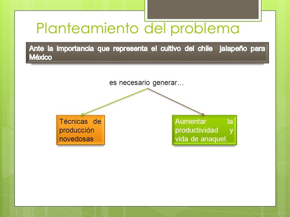 Planteamiento del problema Aumentar la productividad y vida de anaquel. es necesario generar… Técnicas de producción novedosas