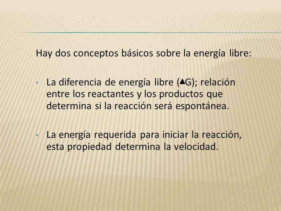 Hay dos conceptos básicos sobre la energía libre: La diferencia de energía libre ( G); relación entre los reactantes y los productos que determina si