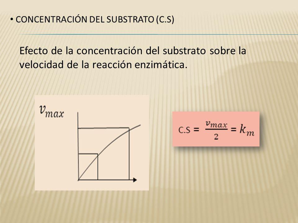 CONCENTRACIÓN DEL SUBSTRATO (C.S) Efecto de la concentración del substrato sobre la velocidad de la reacción enzimática.