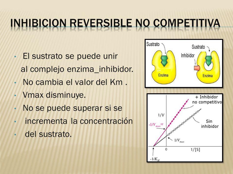 El sustrato se puede unir al complejo enzima_inhibidor. No cambia el valor del Km. Vmax disminuye. No se puede superar si se incrementa la concentraci
