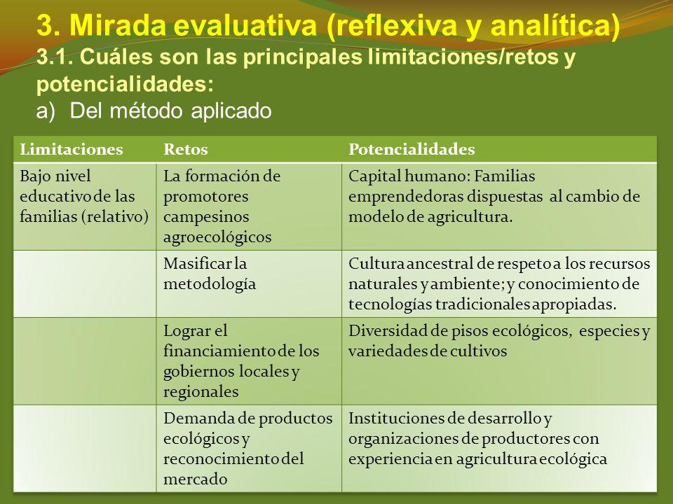 3. Mirada evaluativa (reflexiva y analítica) 3.1. Cuáles son las principales limitaciones/retos y potencialidades: a)Del método aplicado