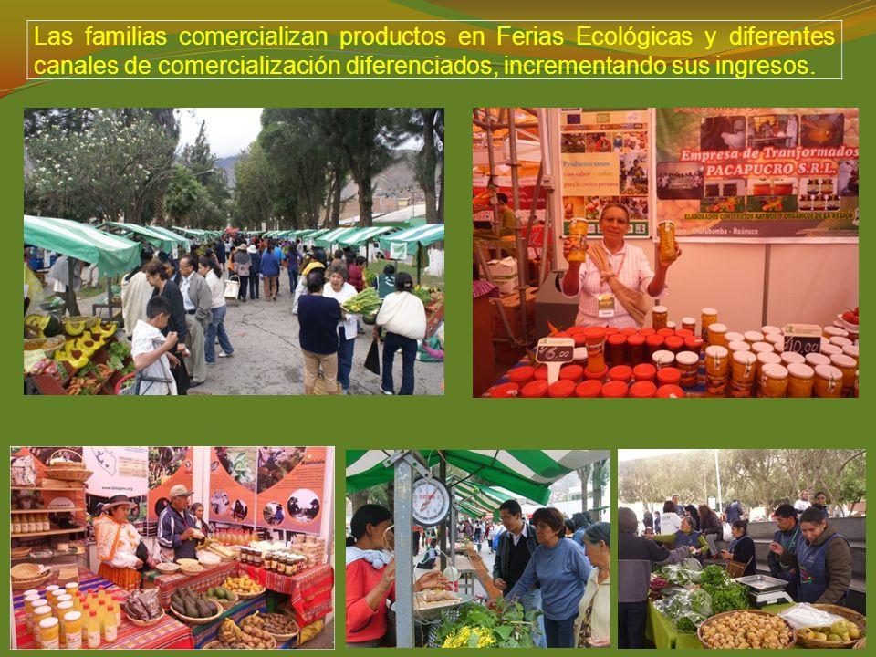 Las familias comercializan productos en Ferias Ecológicas y diferentes canales de comercialización diferenciados, incrementando sus ingresos.