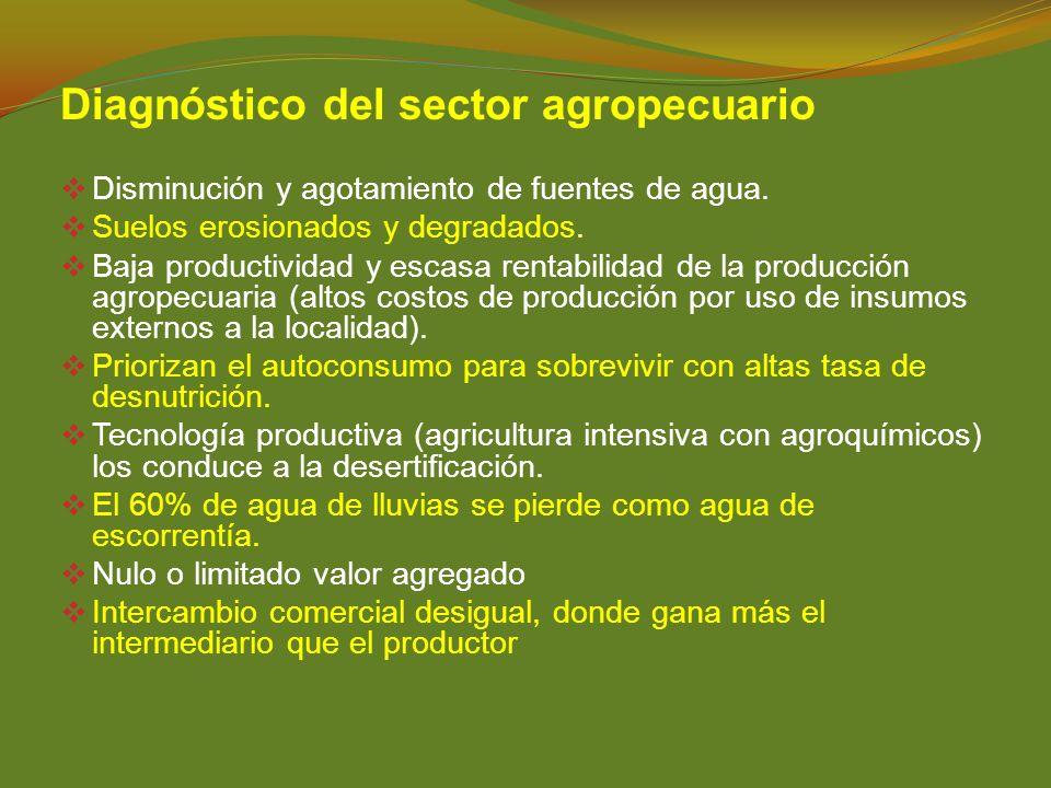Diagnóstico del sector agropecuario Disminución y agotamiento de fuentes de agua. Suelos erosionados y degradados. Baja productividad y escasa rentabi