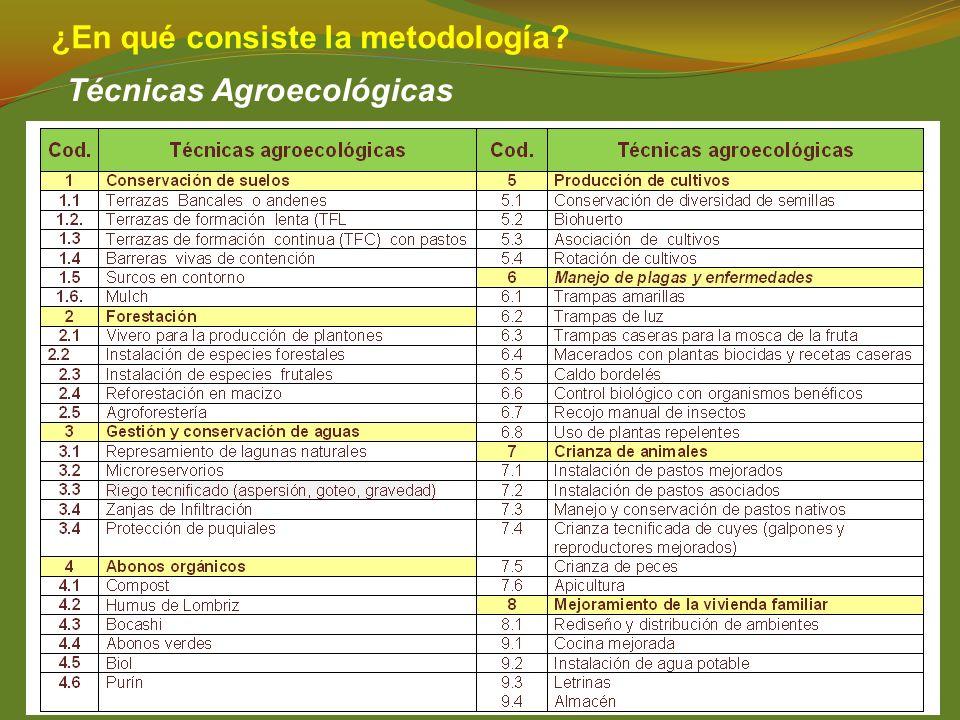 ¿En qué consiste la metodología? Técnicas Agroecológicas