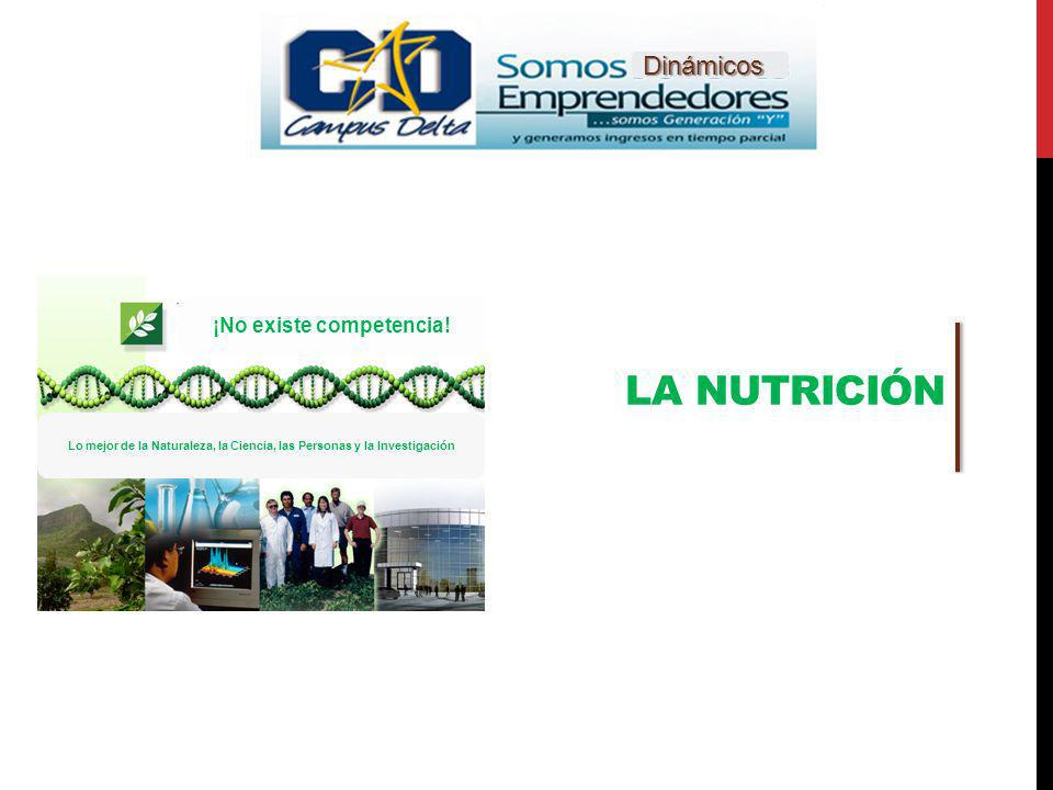 ELEMENTOS DE UNA SALUD ÓPTIMA Ejercicio Nutrición Chequeo médico Actitud Mental Positiva Descanso suficiente Suplementos nutricionales