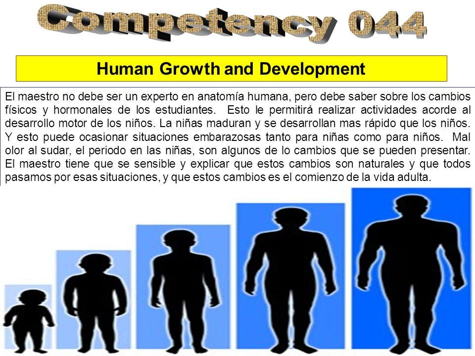 Human Growth and Development El maestro no debe ser un experto en anatomía humana, pero debe saber sobre los cambios físicos y hormonales de los estudiantes.