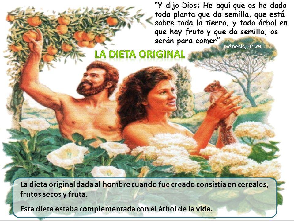 Y al hombre dijo: Por cuanto obedeciste a la voz de tu mujer, y comiste del árbol de que te mandé diciendo: No comerás de él; maldita será la tierra por tu causa; con dolor comerás de ella todos los días de tu vida.