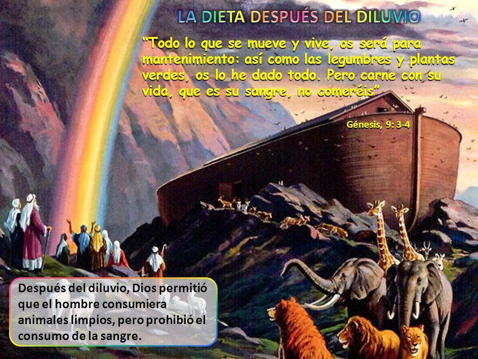 La diferencia entre alimentos limpios e inmundos ya era conocida en tiempos de Noé.