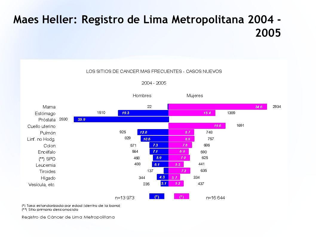 Maes Heller: Registro de Lima Metropolitana 2004 - 2005