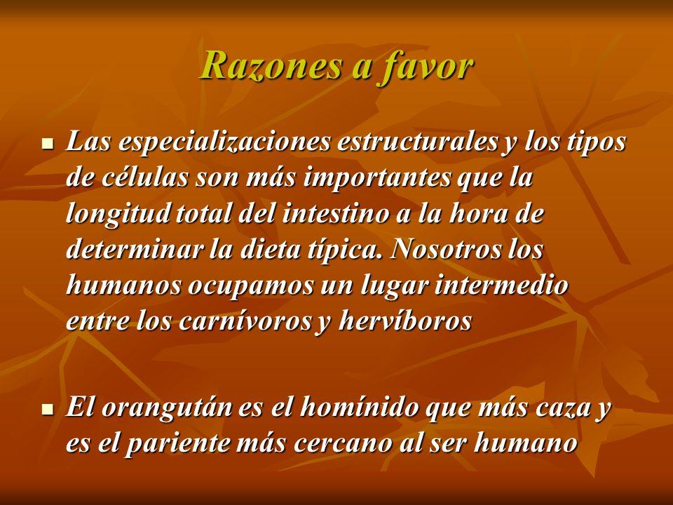 NUTRIENTES PROBLEMA EN LA DIETA VEGETARIANA Proteínas Proteínas Vitamina B 12 Vitamina B 12 Ácidos omega 3 Ácidos omega 3 Yodo Yodo Hierro Hierro Calcio Calcio Zinc Zinc