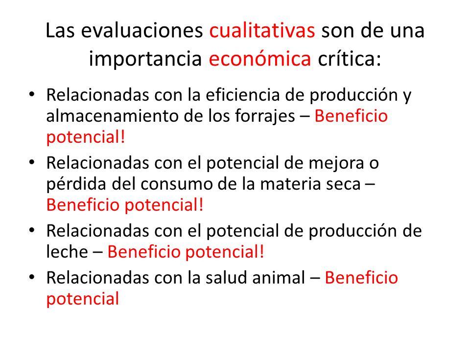 Las evaluaciones cualitativas son de una importancia económica crítica: Relacionadas con la eficiencia de producción y almacenamiento de los forrajes