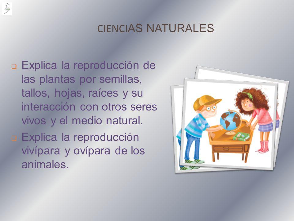 CIENCI AS NATURALES Explica la reproducción de las plantas por semillas, tallos, hojas, raíces y su interacción con otros seres vivos y el medio natur
