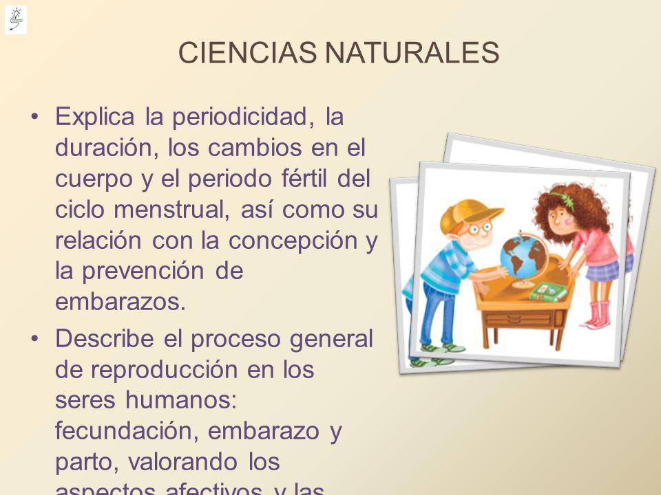 CIENCIAS NATURALES Explica la periodicidad, la duración, los cambios en el cuerpo y el periodo fértil del ciclo menstrual, así como su relación con la