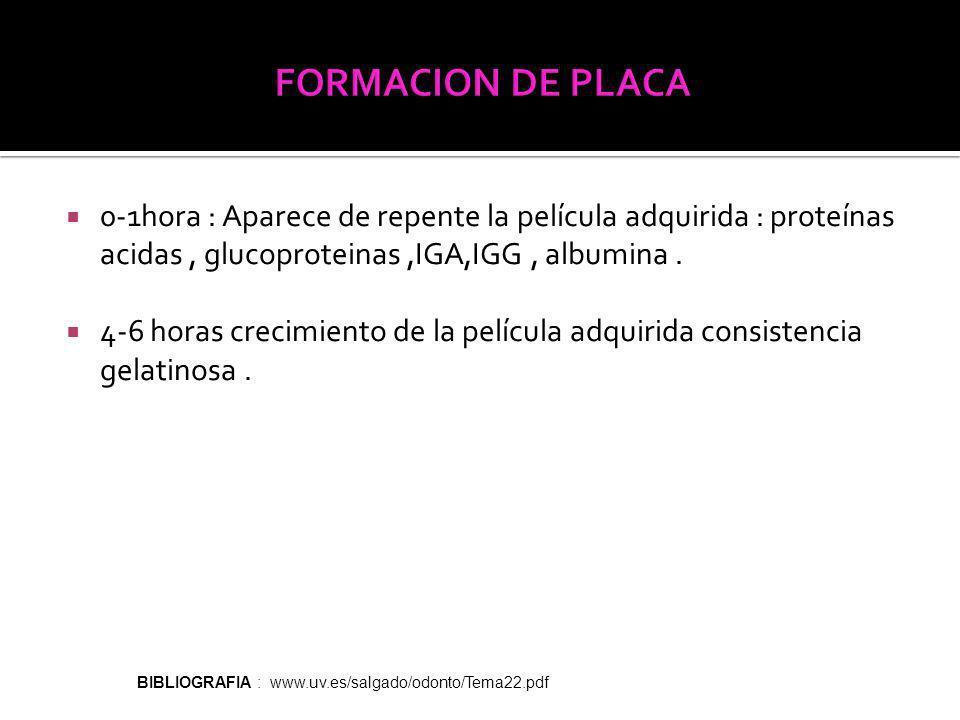 0-1hora : Aparece de repente la película adquirida : proteínas acidas, glucoproteinas,IGA,IGG, albumina.