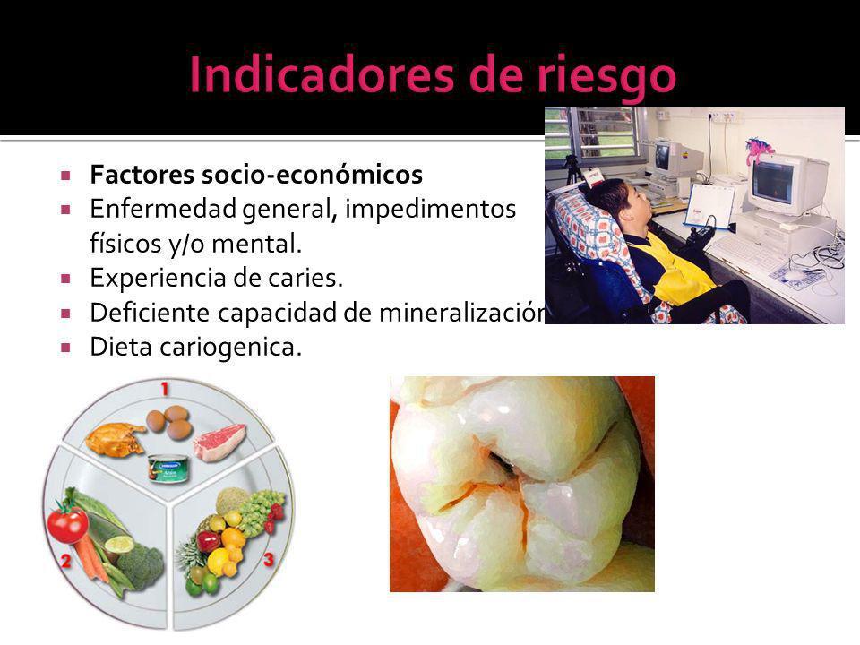 Factores socio-económicos Enfermedad general, impedimentos físicos y/o mental.