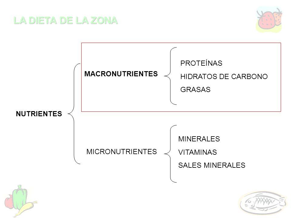 LA DIETA DE LA ZONA NUTRIENTES MACRONUTRIENTES MICRONUTRIENTES PROTEÍNAS HIDRATOS DE CARBONO GRASAS MINERALES VITAMINAS SALES MINERALES