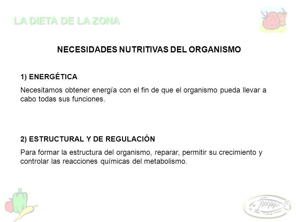 LA DIETA DE LA ZONA NECESIDADES NUTRITIVAS DEL ORGANISMO 1) ENERGÉTICA Necesitamos obtener energía con el fin de que el organismo pueda llevar a cabo