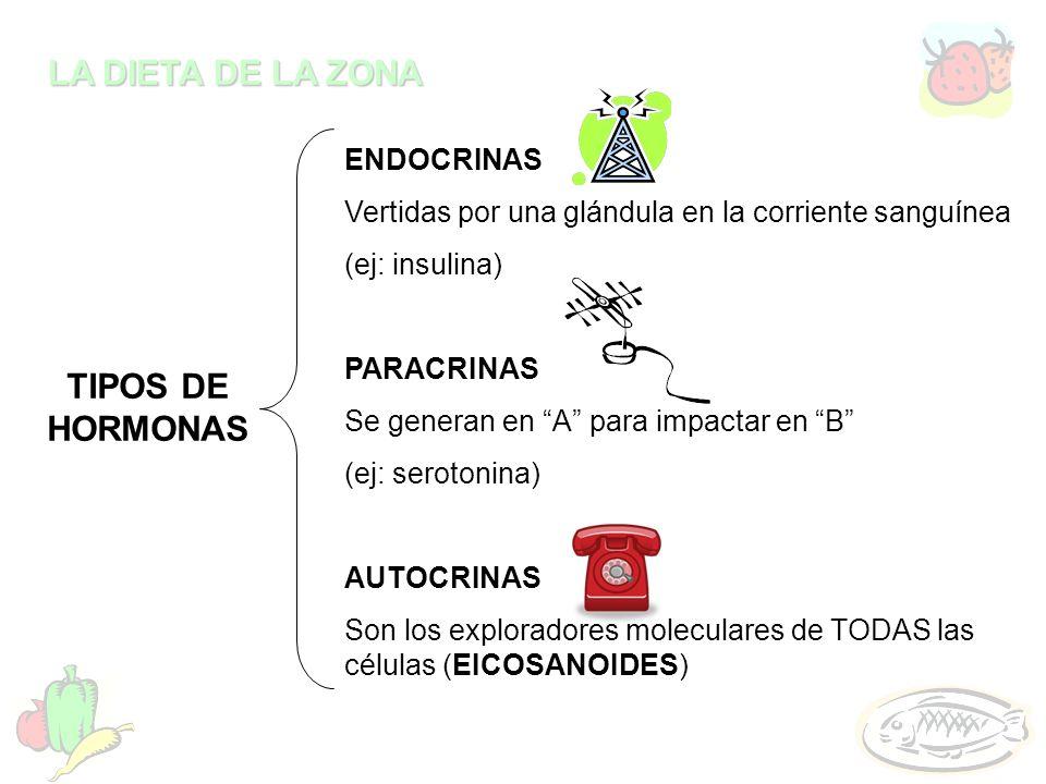 LA DIETA DE LA ZONA ENDOCRINAS Vertidas por una glándula en la corriente sanguínea (ej: insulina) PARACRINAS Se generan en A para impactar en B (ej: s