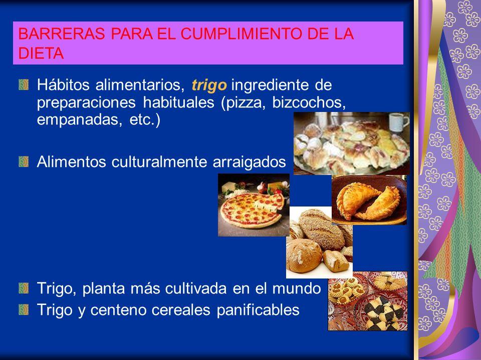 Hábitos alimentarios, trigo ingrediente de preparaciones habituales (pizza, bizcochos, empanadas, etc.) Alimentos culturalmente arraigados Trigo, plan