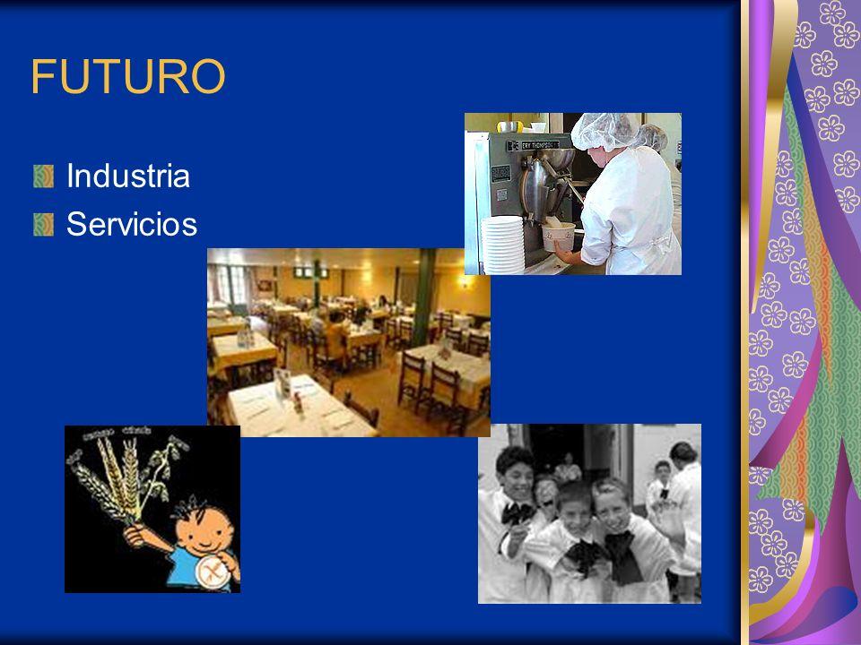 FUTURO Industria Servicios