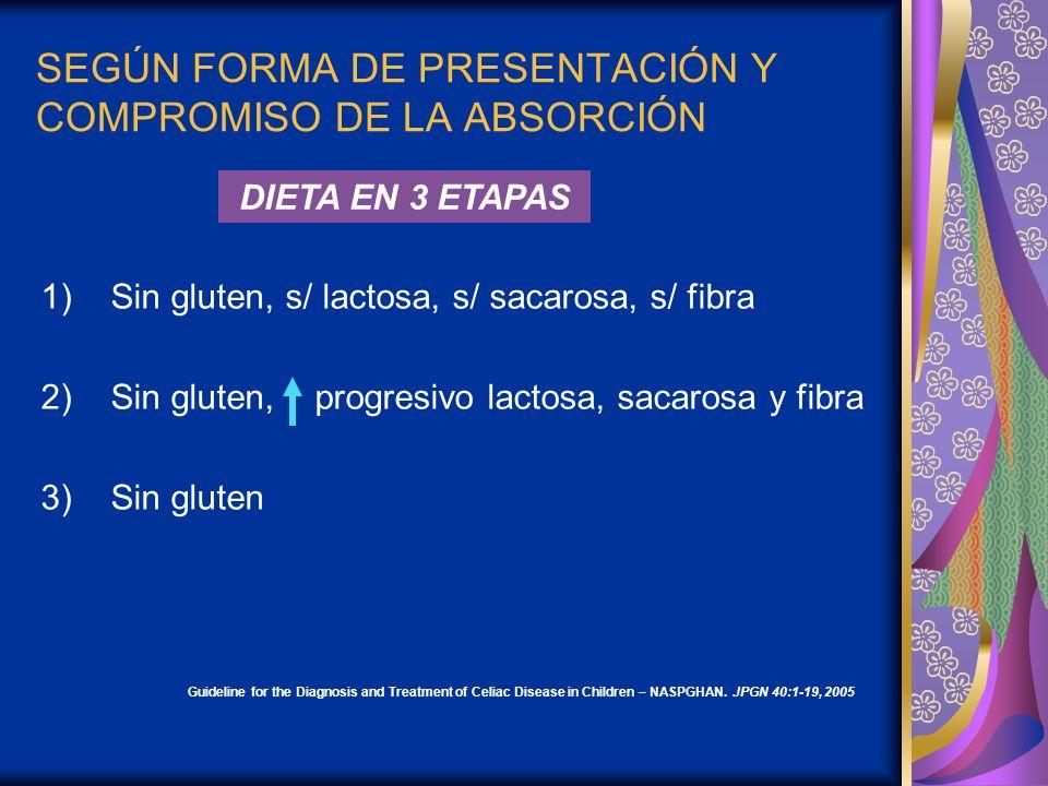 SEGÚN FORMA DE PRESENTACIÓN Y COMPROMISO DE LA ABSORCIÓN 1)Sin gluten, s/ lactosa, s/ sacarosa, s/ fibra 2)Sin gluten, progresivo lactosa, sacarosa y