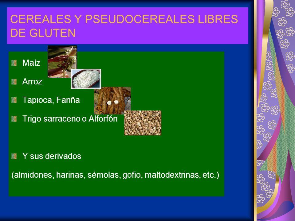 CEREALES Y PSEUDOCEREALES LIBRES DE GLUTEN Maíz Arroz Tapioca, Fariña Trigo sarraceno o Alforfón Y sus derivados (almidones, harinas, sémolas, gofio,