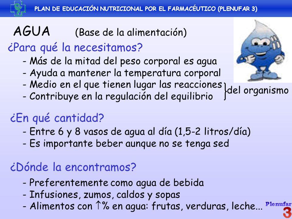PLAN DE EDUCACIÓN NUTRICIONAL POR EL FARMACÉUTICO (PLENUFAR 3) AGUA (Base de la alimentación) ¿Para qué la necesitamos? - Más de la mitad del peso cor