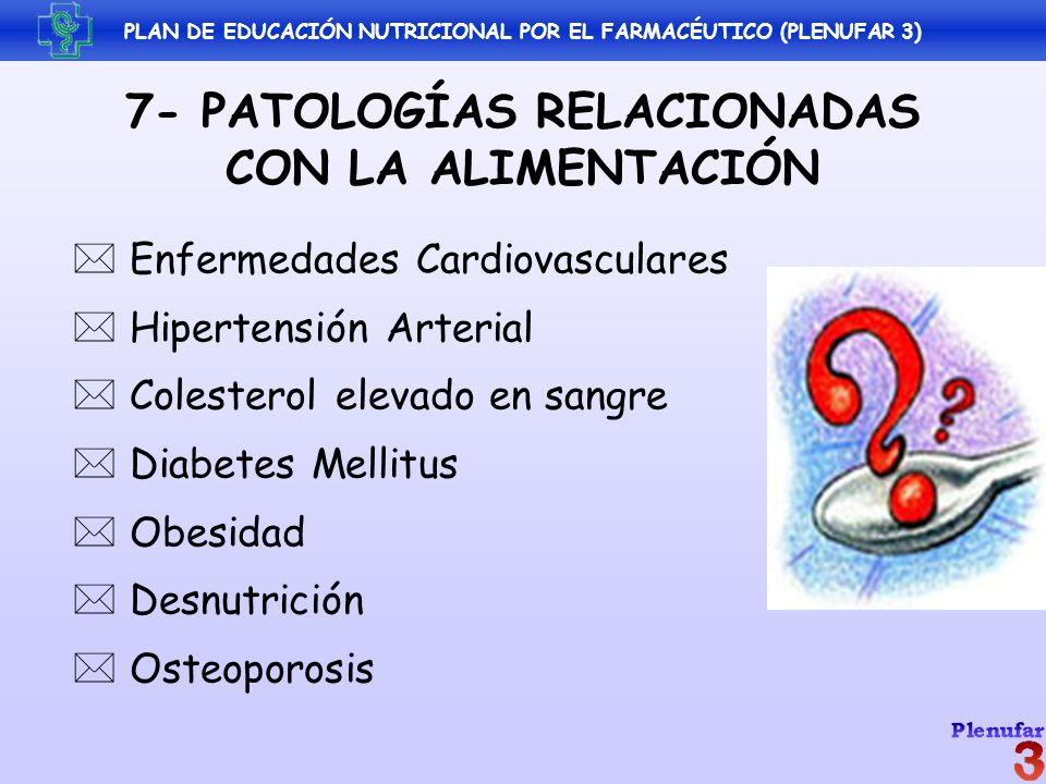 7- PATOLOGÍAS RELACIONADAS CON LA ALIMENTACIÓN Enfermedades Cardiovasculares Hipertensión Arterial Colesterol elevado en sangre Diabetes Mellitus Obes