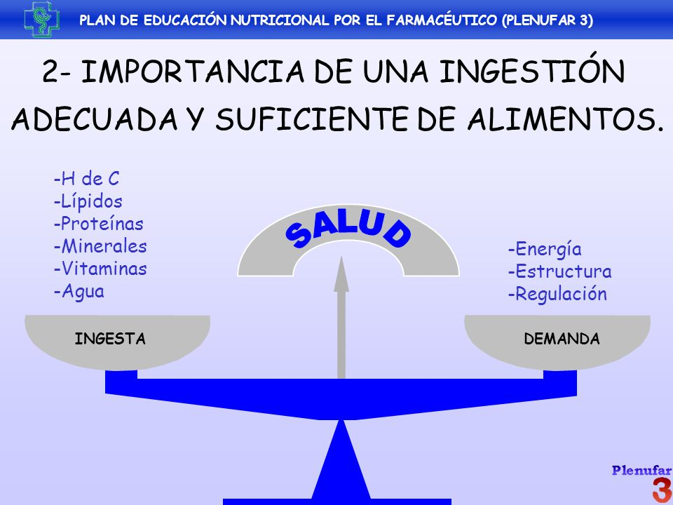 2- IMPORTANCIA DE UNA INGESTIÓN ADECUADA Y SUFICIENTE DE ALIMENTOS. DEMANDAINGESTA -H de C -Lípidos -Proteínas -Minerales -Vitaminas -Agua -Energía -E