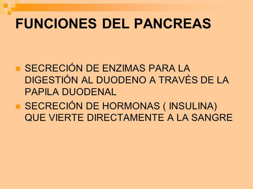 FUNCIONES DEL PANCREAS SECRECIÓN DE ENZIMAS PARA LA DIGESTIÓN AL DUODENO A TRAVÉS DE LA PAPILA DUODENAL SECRECIÓN DE HORMONAS ( INSULINA) QUE VIERTE D