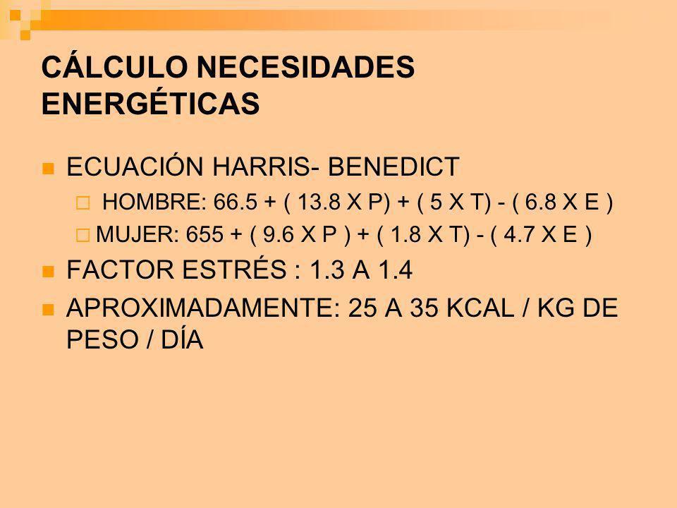 CÁLCULO NECESIDADES ENERGÉTICAS ECUACIÓN HARRIS- BENEDICT HOMBRE: 66.5 + ( 13.8 X P) + ( 5 X T) - ( 6.8 X E ) MUJER: 655 + ( 9.6 X P ) + ( 1.8 X T) -