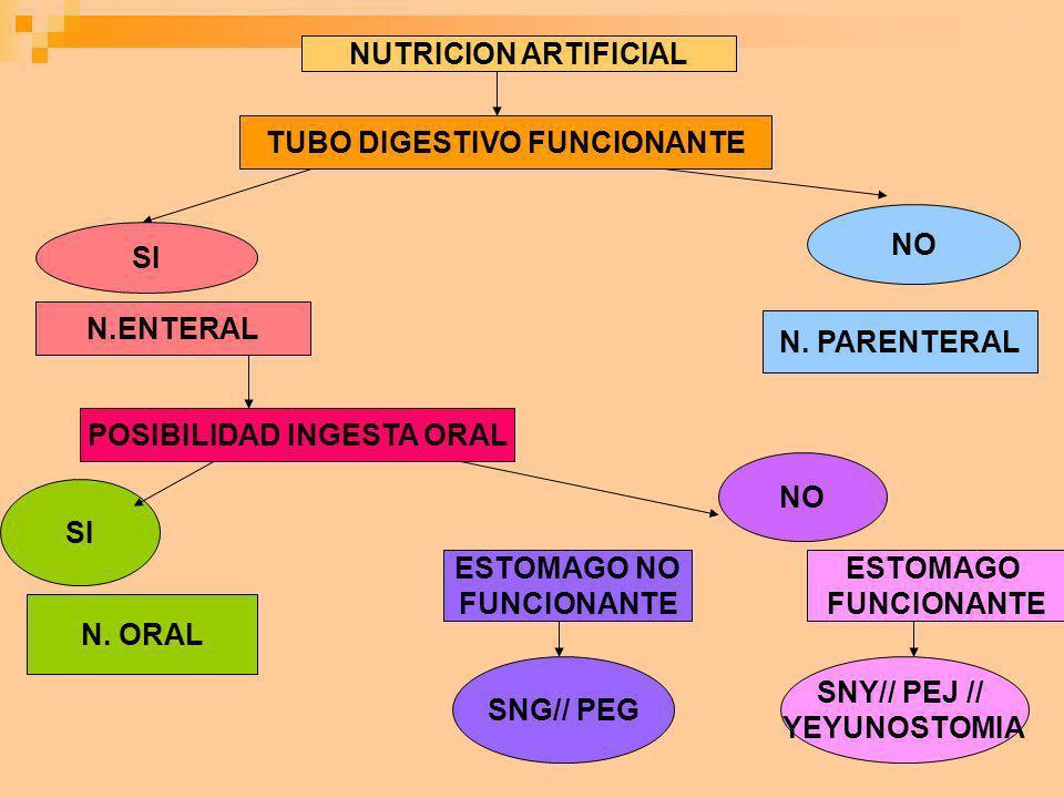 NUTRICION ARTIFICIAL TUBO DIGESTIVO FUNCIONANTE NO SI N. PARENTERAL N.ENTERAL POSIBILIDAD INGESTA ORAL SI NO N. ORAL ESTOMAGO NO FUNCIONANTE ESTOMAGO