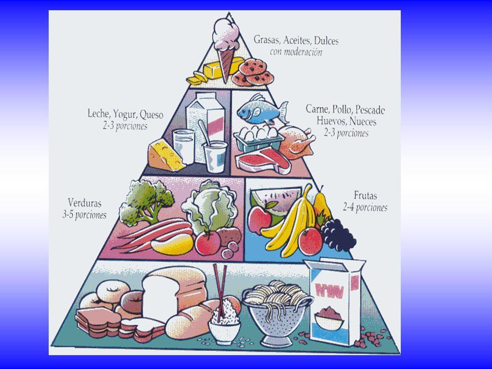 ¿Cómo tener una buena dieta equilibrada.