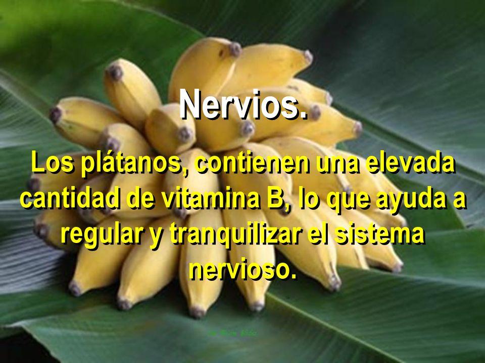 Nervios. Los plátanos, contienen una elevada cantidad de vitamina B, lo que ayuda a regular y tranquilizar el sistema nervioso.