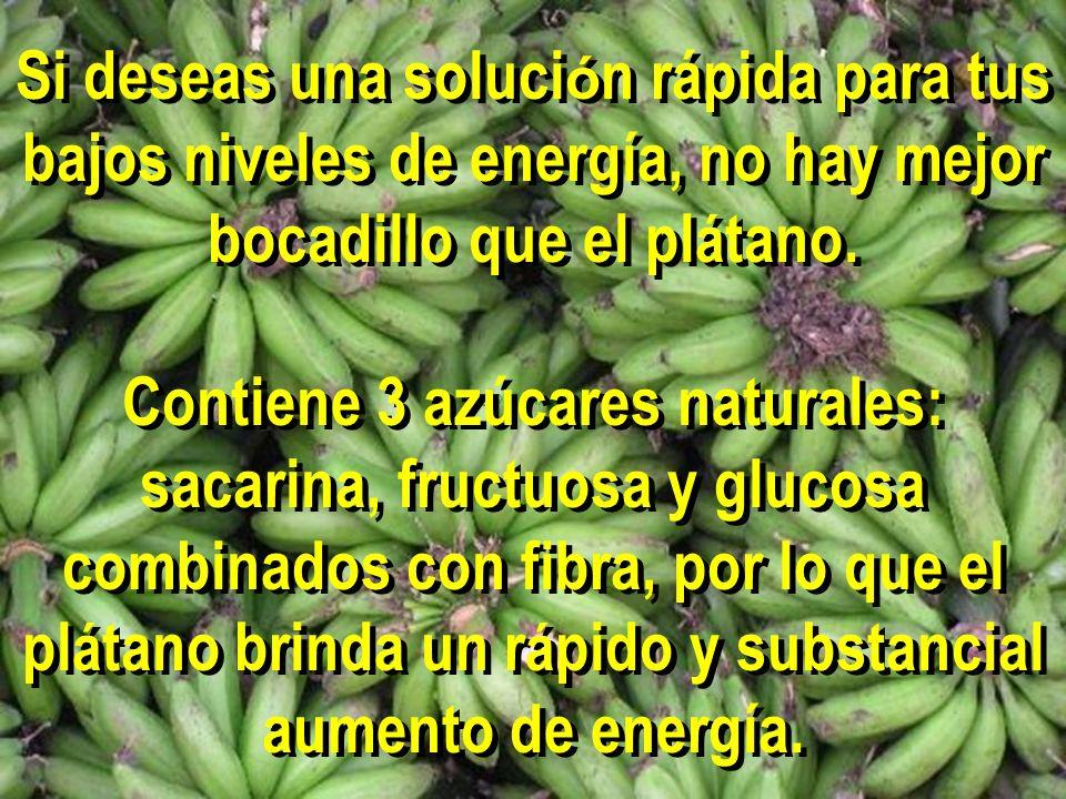 Si deseas una soluci ó n rápida para tus bajos niveles de energía, no hay mejor bocadillo que el pl á tano. Contiene 3 azúcares naturales: sacarina, f