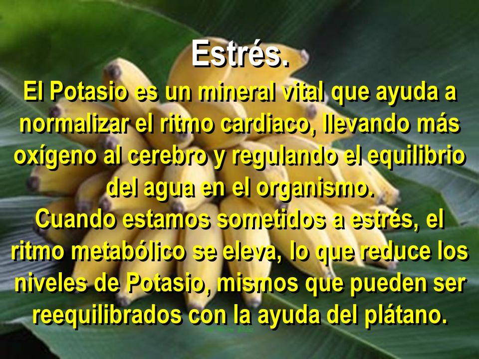 Estrés. El Potasio es un mineral vital que ayuda a normalizar el ritmo cardiaco, llevando más oxígeno al cerebro y regulando el equilibrio del agua en