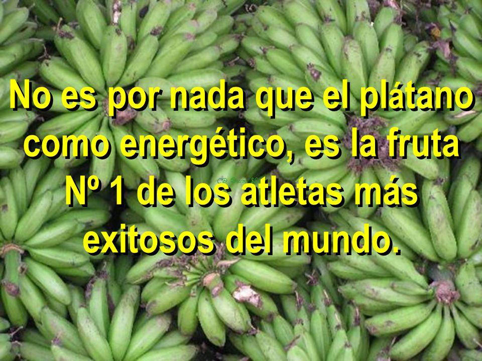 El plátano ayuda también a curar o prevenir un gran número de enfermedades y malestares físicos, lo que lo debiera hacerlo obligatorio en la dieta diaria.