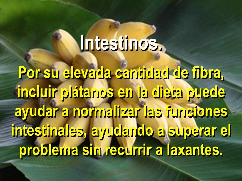 Intestinos. Por su elevada cantidad de fibra, incluir pl á tanos en la dieta puede ayudar a normalizar las funciones intestinales, ayudando a superar