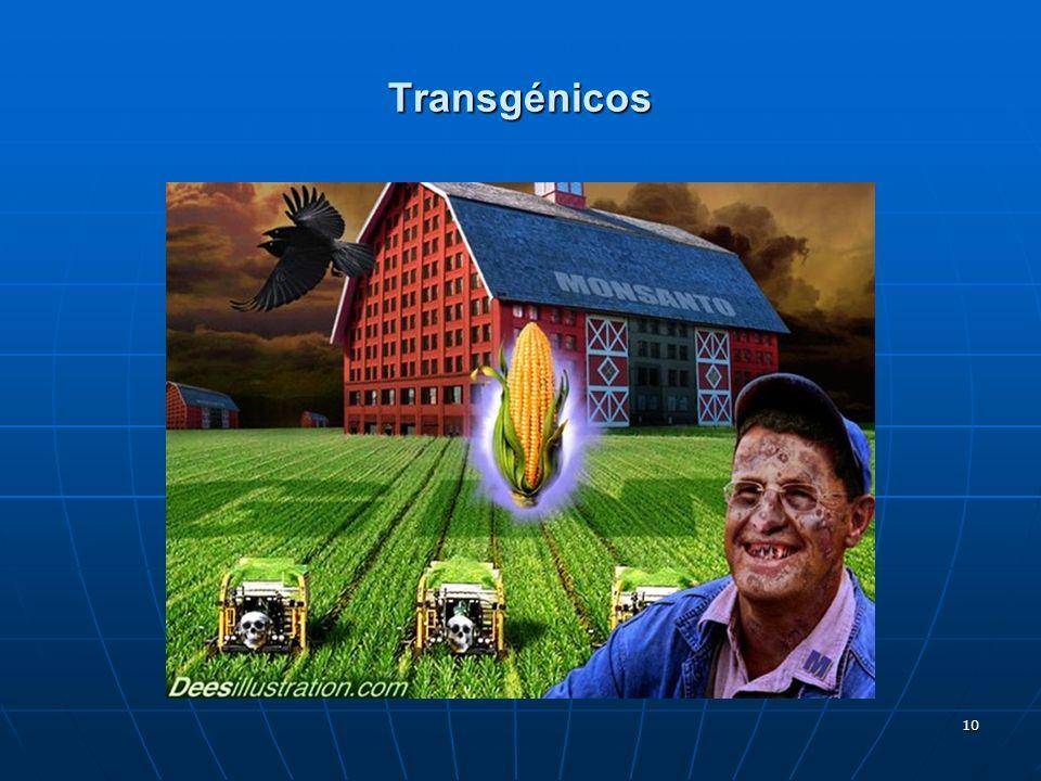 10 Transgénicos