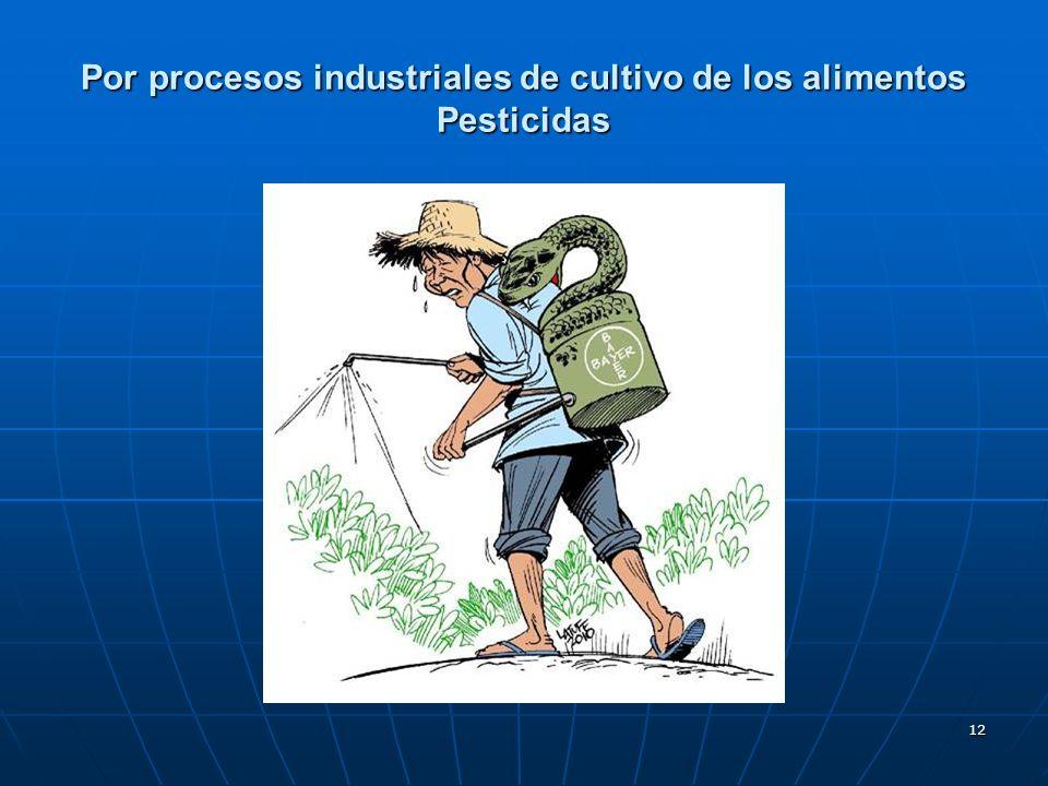12 Por procesos industriales de cultivo de los alimentos Pesticidas