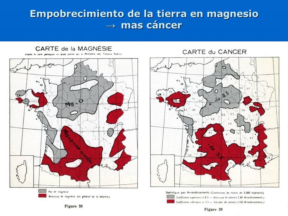 29 Empobrecimiento de la tierra en magnesio mas cáncer mas cáncer
