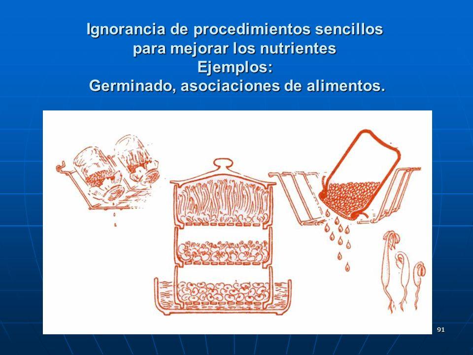 91 Ignorancia de procedimientos sencillos para mejorar los nutrientes Ejemplos: Germinado, asociaciones de alimentos.