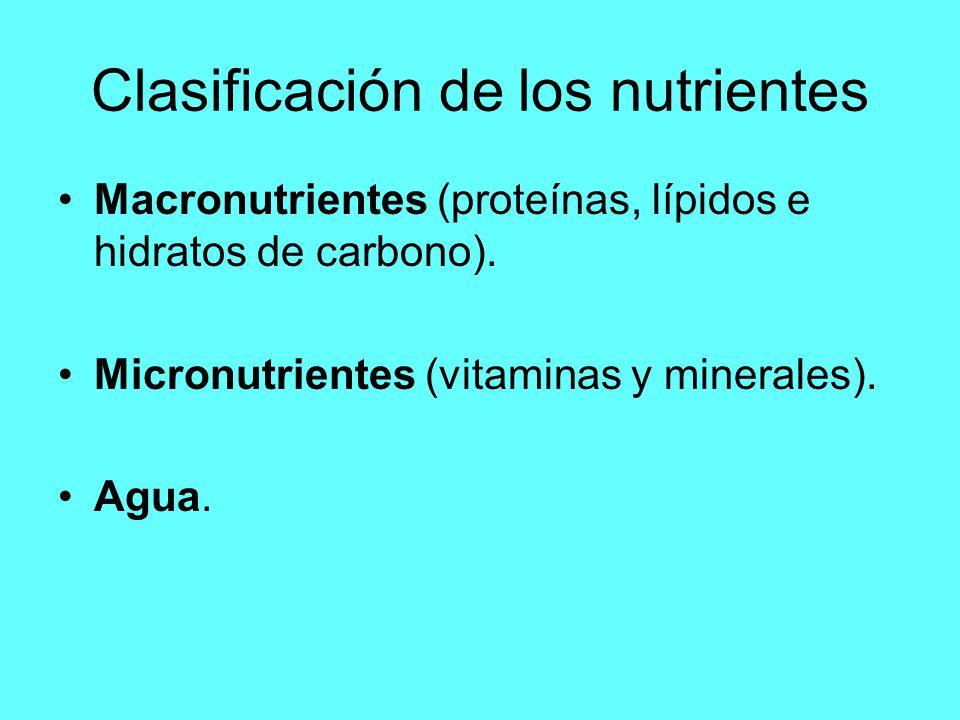 Clasificación de los nutrientes Macronutrientes (proteínas, lípidos e hidratos de carbono). Micronutrientes (vitaminas y minerales). Agua.