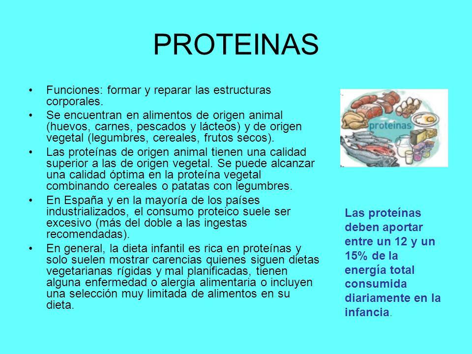 PROTEINAS Funciones: formar y reparar las estructuras corporales. Se encuentran en alimentos de origen animal (huevos, carnes, pescados y lácteos) y d