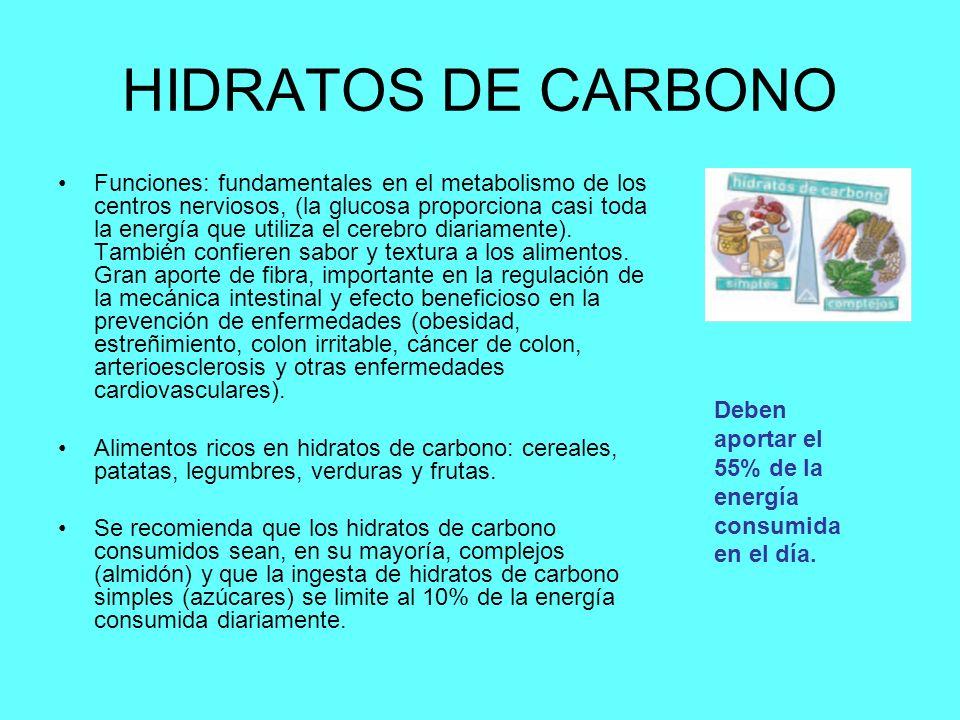 HIDRATOS DE CARBONO Funciones: fundamentales en el metabolismo de los centros nerviosos, (la glucosa proporciona casi toda la energía que utiliza el cerebro diariamente).