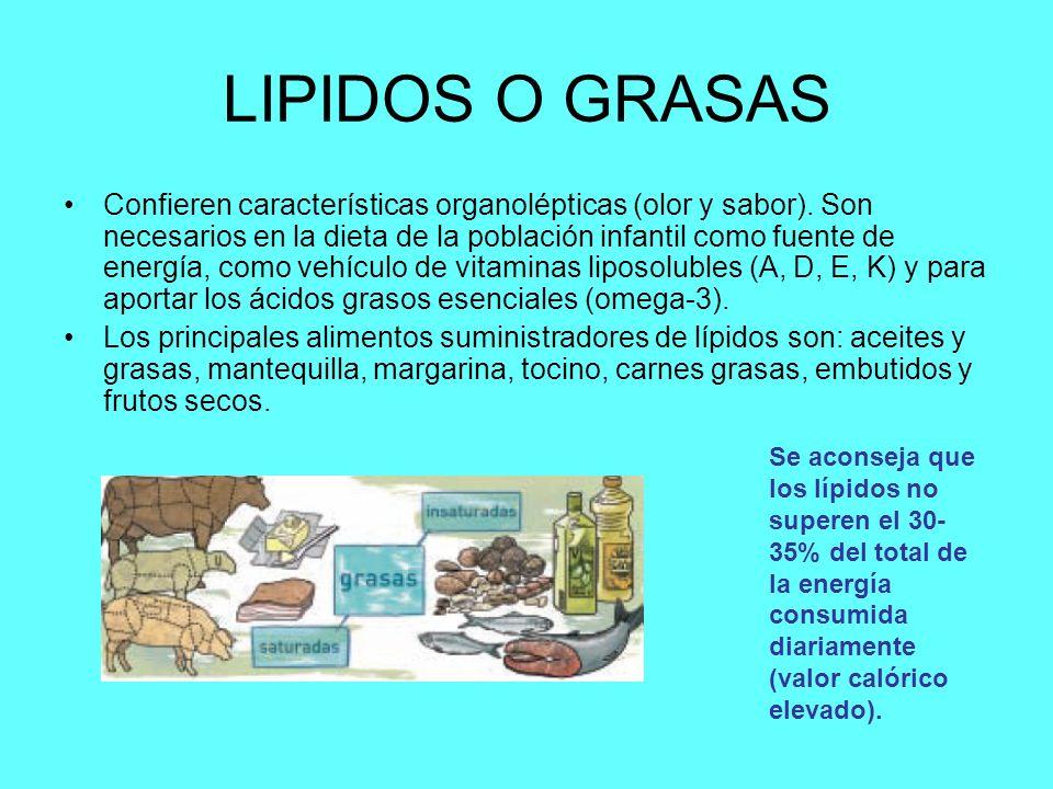 LIPIDOS O GRASAS Confieren características organolépticas (olor y sabor). Son necesarios en la dieta de la población infantil como fuente de energía,